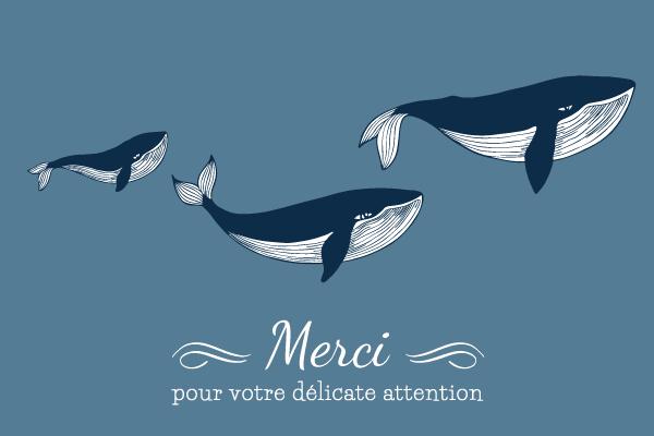 faire-part-naissance-baleine-merci