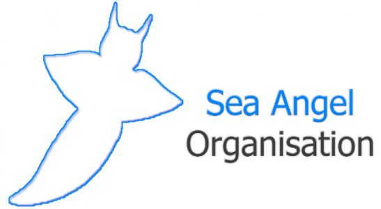 Sea Angel Organisation